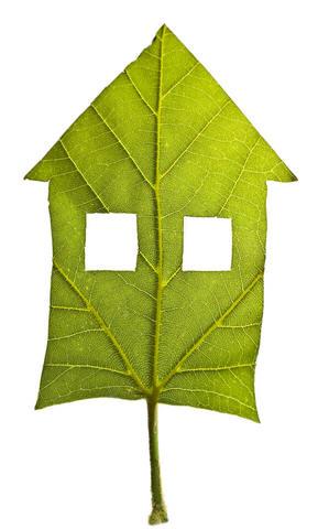 Toxicitatea materialelor de constructii  - Case Ecologice