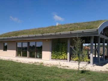 Case Ecologice – casa cu acoperis verde