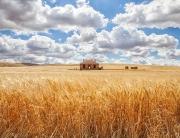 Definitia unei case ecologice